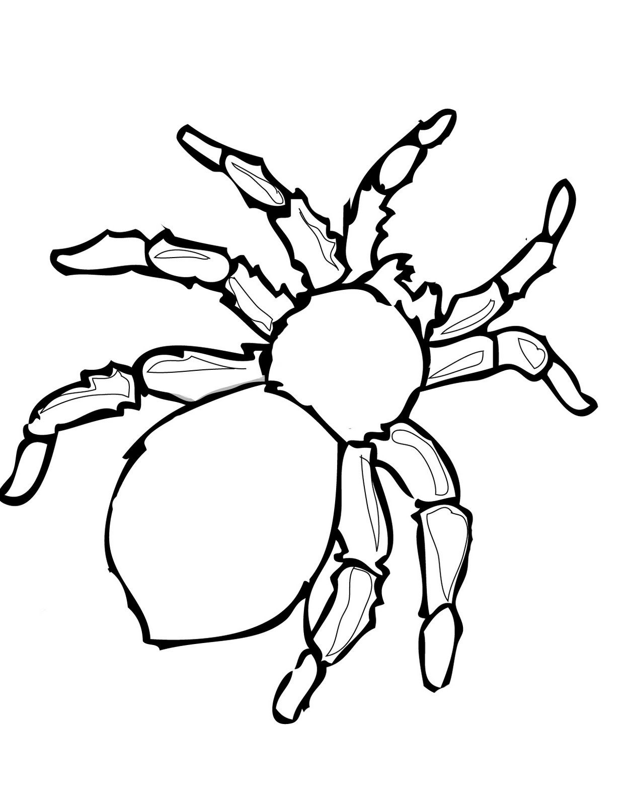 printable halloween spider coloring pages - photo#3