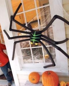 DIY Spider3